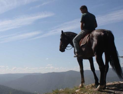 Тур (6-7 дней): горы, кони и азы альпинизма